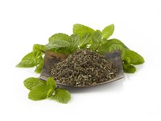 Mint Majesty Herbal Tea | Refreshing spearmint and peppermint, balanced by the sweet citrus notes of lemon verbena.  | Cooling spearmint & peppermint abound in this refreshing herbal infusion | $6.98