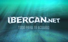 Esta semana en la #TiendaDeLaSemana os presentamos a nuestros amigos de Ibercan y su pasión por la acuariofilia. http://blog.hagen.es/?p=1700 #Productos #Mascotas