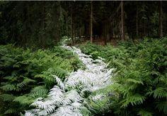 http://www.skovsnogen.dk/ Ellie Davies