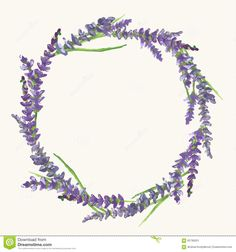 Lavender Wreath, Watercolor Painting, Illustration Stock Vector - Image: 65790031