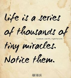 Daily miracles...