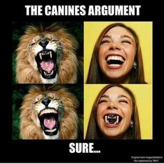 """A few people have been leaving comments recently like """"but we have canines so obviously we should eat meat"""" so I'll address this now. _ When humans eat flesh we don't actually tear it with our canines like carnivores do. _ Instead we have to first soften meat by cooking it and then cutting it using utensils before grinding it down with our flattened molars which as it happens are particularly well-suited for chewing plants.  _ So using teeth as an indicator of diet is a hard case to make…"""