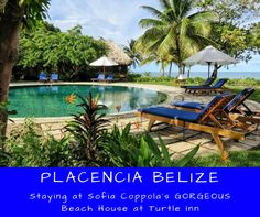 Gorgeous lush landscape at the beach - this beach house at Francis Ford Coppola's Resort in Placencia Belize is an absolute dream. Wedding or honeymoon heaven. Belize Resorts, Future Travel, Lush, Caribbean, Beach House, Travel Destinations, Turtle, To Go, Dream Wedding