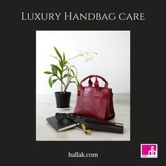 9 Best handbag and shoe care images  1cf4174de83f7