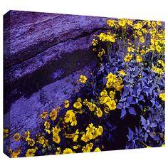 'Desert Sunflower Dusk' by Dean Uhlinger Photographic Print Gallery-Wrapped on Canvas