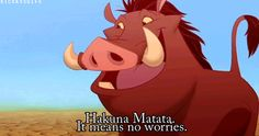 Hakuna Matata...It means no worries for the rest of your days.  It's our problem free philosophy..Hakuna Matata.