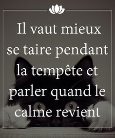 It is better to remain silent during the storm and speak when the calm returns. French Words, French Quotes, Positive Attitude, Positive Vibes, Proverbs Quotes, Quote Citation, Some Quotes, Positive Affirmations, Cool Words
