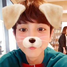 """- IG update] puppy and kitty Chanyeol """" Chanyeol Cute, Park Chanyeol Exo, Exo Chanyeol, Kyungsoo, Kpop, Jimin, Baekyeol, Exo Korean, Kim Minseok"""