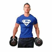https://theabsoluteshop.myshopify.com/collections/men-clothing/products/hot-sale-tee-m-2xl-superman-t-shirt-mens-bodybuilding-clothing-fitness-men-short-sleeve-free-shipping-good-quality-the-absolute-shop