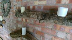 Willow hearts logs and candles