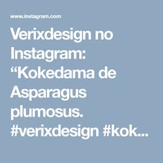 "Verixdesign no Instagram: ""Kokedama de Asparagus plumosus. #verixdesign #kokedamabyverixdesign #kokedama #verdepontual #decornatural #asparagusplumosus #amotudoisso"" • Instagram"