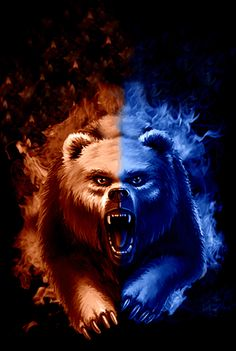 Bear down Chicago Chicago Cubs Pictures, Bear Pictures, Chicago Bears Wallpaper, Bear Wallpaper, Gifs, 1985 Chicago Bears, Bear Gif, Bears Football, Football Stuff