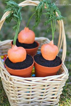 Potted Carrots? or Chocolate Cake with Dipped Strawberries? We will let you decide.