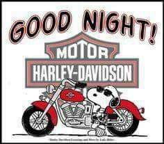 Snoopy and his super cool bike,. A Harley. Good Night Messages, Good Night Quotes, Good Morning Good Night, Harley Davidson Quotes, Harley Davidson Wallpaper, Funny Day Quotes, Hd Design, Snoopy Comics, Snoopy Pictures