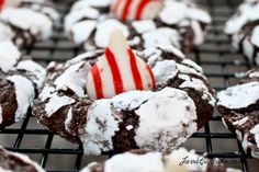 Candy Cane Crinkle Blossoms -- christmas