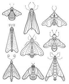 insect art Sculpture Old Computers is part of Winged Insect Sculptures From Old Computer Parts And - 23 Free Printable Insect & Animal Adult Coloring Pages Insect Coloring Pages, Free Coloring Pages, Printable Coloring, Coloring Book Pages, Mandala Coloring, Coloring Sheets, Coloring Pages Nature, Pattern Coloring Pages, Fairy Coloring