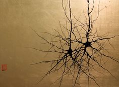 Neuroscience | Two Pyramidals | Pyramidal cells are a type of neuron found in the brain that integrate information received from their dendrites (branching at the bottom of the cell), process it, and transmit it to other cells through its axon (large branch emerging from the cell going upwards).