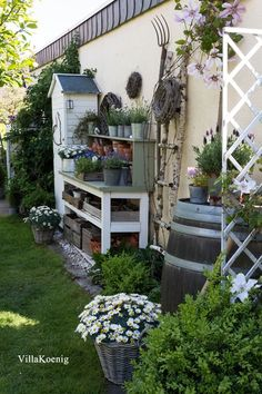 Ladder Decor, Outdoor Structures, Plants, Villa, Backyard Hammock, Your Favorite, Tulip Bulbs, Paradise On Earth, Flower Beds