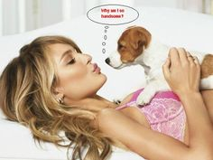 """Για όσους δεν γνωρίζουν αγγλικά, ο σκύλος λέει """"γιατί είμαι τόσο ωραίος""""?"""
