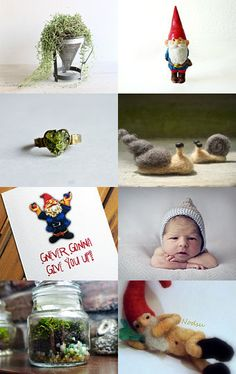 Gnomes♥ #gnomes #garden