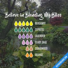 Believe in Blending My Bliss - Essential Oil Diffuser Blend