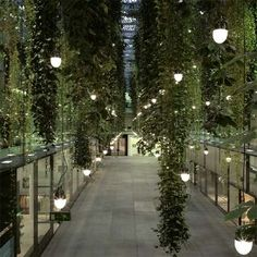 Via urbangreens:    Hanging Gardens 5 HOFE, Munich Courtesy of Simone Rosenberg  via indoorlandscaping