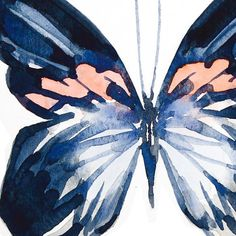 Happy Saturday everyone! Shall we do navy & peach today? Butterfly Painting, Butterfly Watercolor, Butterfly Art, Watercolor Paintings, Painting Inspiration, Art Inspo, Butterflies Flying, Art Pictures, Illustration Art