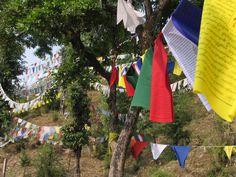 """Lung ta (Tibetaans voor """"windpaard"""") gebedsvlaggen. Er staan symbolen, mantra's en gebeden op. De wind voert ze mee over de wereld voor  vrede, compassie, kracht en wijsheid.  Lung ta vlaggen vind je bij tempels, bergpassen en hoge rotspunten."""