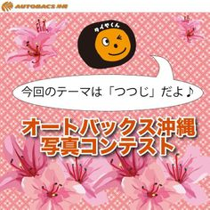 オートバックス沖縄プレゼンツ★ 皆さんが撮影した画像を投稿してください! テーマは「つつじ」です☆☆ 優秀作品は、オートバックス沖縄のフェイス ブックページにてご紹介させて頂きます♪  皆様の自慢の写真を、楽しみにお待ちしてお  りま~す(^▽^)/!! http://bit.ly/tsutsujifes