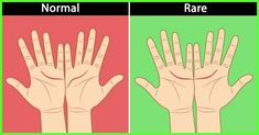 What do your palm lines tell you?