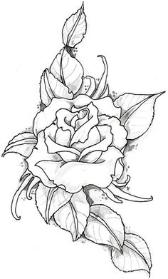 Outline of Drawing and Drawings Bing images Coloring pages for