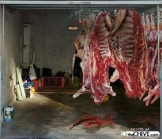 This Gives You The Illusion Of An Open Garage With Meat Hanging Very Cool