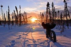 Fat Bike touring Alaska
