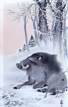 Ohara Koson, Cinghiale seduto in un paesaggio nevoso