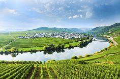 4-Sterne Hähn Moselhotel in #Koblenz: 51% sparen - Doppelzimmer  nur 67,00€ statt 135,00€!