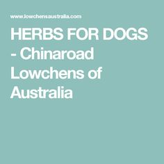 HERBS FOR DOGS - Chinaroad Lowchens of Australia