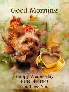 Good Morning Kisses, Good Morning Wednesday, Good Morning Coffee, Good Morning Happy, Good Morning Quotes, Happy Wednesday Quotes, Bible Verses About Faith, Weekday Quotes, Morning Blessings