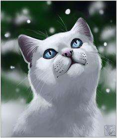 Snowfur by ashkey
