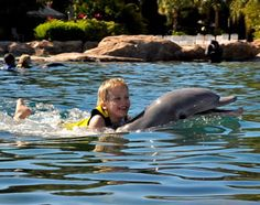 A Dream… I have discovered an absolutely perfect vacation destination — Discovery Cove in Orlando, Florida. Seriously, it is as if Discovery Cove were built to my dream specifications! Swimming with the Dolphins I know I am among many when I say it was a dream of mine to swim with a dolphin. (I think …