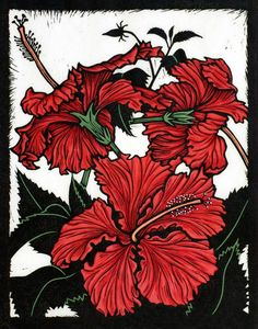 "Rachel Newling (Australian contemporary artist and printmaker) - ""Yann's Red Hibiscus"" - Hand coloured linocut on handmade Japanese paper Exotic Flowers, Tropical Flowers, Purple Flowers, Oriental Lily, Tinta China, Scratchboard, Australian Art, Wood Engraving, Linocut Prints"