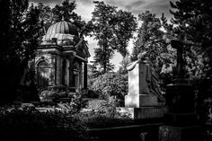 https://flic.kr/p/NofCW2 | Nordfriedhof | Düsseldorf