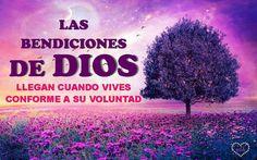 Las Bendiciones de Dios, llega cuando vives conforme a su voluntad!