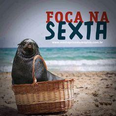 #Bom dia #foco #força #fé #bomhumor