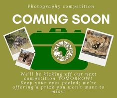 We had such an overwhelming response to our previous competition that we thought we'd run another one! Keep an eye on our page tomorrow for more details! Competition Time, Photography Competitions, Another One, Keep An Eye On, Tuesday, No Response, Africa, Running, Thoughts
