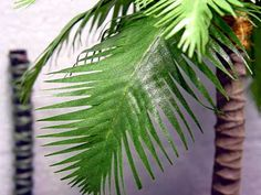 Make fake palm tree with tree branch and artificial leaves that you cut or palm fronds you buy.