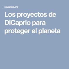 Los proyectos de DiCaprio para proteger el planeta