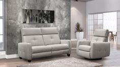 fusion Sofa and Chair