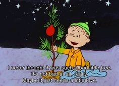I never thought it was such a bad little tree. It's not bad at all, really. Maybe it just needs a little love. ~Linus