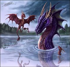 ...little dragons learning to catch fish...<3 ...Art by Izabela Kaszuba...  http://red-izak.deviantart.com/