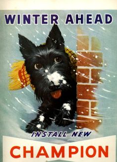 vintage scottish terrier dog 1948 advertisement by FrenchFrouFrou, $19.95